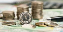 Zloty Extends Losses ahead of Rate Decision - Fundamental Analysis - Forex Trading
